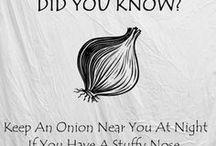 Random Facts / Random facts and factoids.