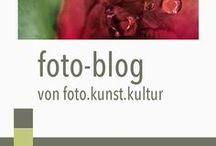 foto.blog von foto.kunst.kultur / Beiträge, Tipps und Fotokurse von foto.kunst.kultur für Einsteiger und Fortgeschrittene. Kreative Fotografie, Bildkomposition, Bildbearbeitung, Photoshop und Lightroom. Aus dem foto.blog von Helga Partikel