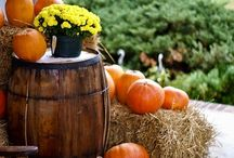 FALL- DECOR / by Berries