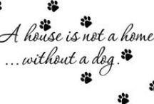 I ♥ my dog!