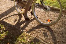 Dutch Bike with wooden box