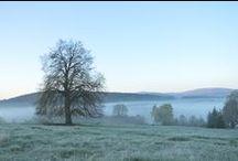 Kde všude je krásně a co jsem si vyfotila v ČR / Moje fotografie