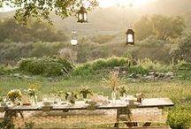 ...un giardino così / che si fa da sè