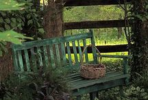 Yards & Gardens / by Brenda Topkin