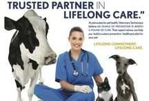 We love our Veterinary Technicians
