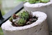 Inspirational ideas in stone / Inspirational ideas in stone