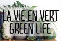 La Vie en Vert - Green Life / #vert #green #plante #verdure #vegetation #fleur #flore #plantes #décoration #deco #inspiration #domus #idées