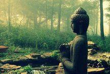 •buddha•