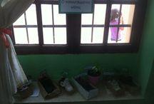 ΠΑΠΟΥΤΣΩΜΕΝΟΣ ΚΗΠΟΣ ΜΕΣΑ ΣΤΗΝ ΤΑΞΗ / Μέσα στην τάξη μας!