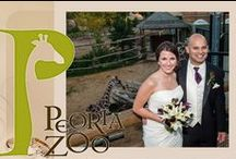 Weddings at Peoria Zoo / Peoria Zoo offers a variety of ways to plan your event with us. The Zambezi River Lodge and Village that has an authentic rondavel. It is a round building with great views of the new Africa! exhibit.