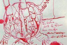 Muriel Meynlé Artiste Plasticienne / Mes peintures, mes carnets de voyages mes coup de cœur tout ce que j'aime et qui alimente mon imagination