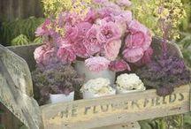 Idékollage romantisk trädgård