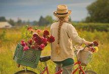 Bikes/Biciklik/Kerékpárok
