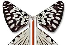 Nos papillons magiques // Magic butterflies / Découvrez tous les papillons magiques proposés par MagicFlyer au fil des années.