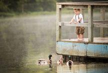 ᗪUᏣKԼ¡ᑎƓᏕ / ᗋ‧:•★•: Լ •: Life Around The Pond & Lake