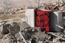Reportage: Palestina / Una terra ricca di storia e cultura, cuore pulsante lacerato da conflitti.