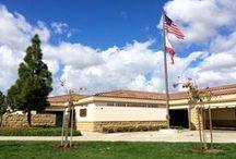 Our Campus / Oak Creek Elementary is on Instagram, Facebook, & Twitter: ocwiseowls