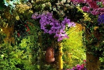G A R D E N S / I love flowers and gardens, they are so peaceful and beautiful