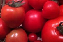 My Garden-2011 / my vegetable garden! / by debbie bakos