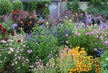 gardens i like to look at / by debbie bakos