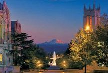 Tour #UWCampus / Housing, The HUB, Husky Stadium and more. Discover all that the UW has to offer.