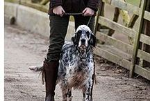 Sporting Dogs / At Rebecca Ray Designs, we treasure the beauty of sporting dogs in the field, at work and at play.