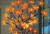 Fall Beauty / by Shannon Yontz