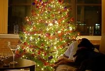 Holidays / by MaryAnn Nettie Strobel
