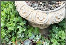 My Soulful Home ~ Garden / Garden information, facts, tips, advice and plans / by My Soulful Home