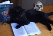 Cats with Books / Books examined, read, viewed, owned or claimed by felines.