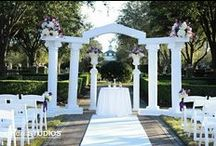 More OWPR Rentals / by Orlando Wedding & Party Rentals