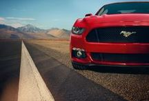 2015 Ford Mustang / The next Generation of America's favorite Pony is here! / by Mike TheCarGuy