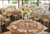 Paradise Cove Weddings / by Orlando Wedding & Party Rentals
