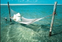 Holiday Vacation Places / Travel, vacation, holidays checkout our account for Holiday Vacation Places.