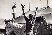Curtis Circus / by ian curtis