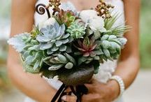 Green Wedding Colors  / by Mary's Bridal