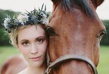 wedding/shower / by Donna Dugone
