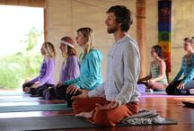 Classes at Yandara / Every morning starts with a delicious yoga class taught by Yandara's experienced teacher faculty at Yandara Yoga Institute.