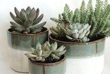 Decoración con cerámica / ¿Ya estás pensando en cómo vas a decorar tu hogar este próximo otoño para que sea lo más acogedor posible?