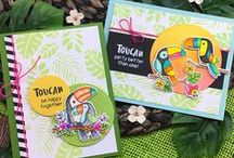 Toucan Party - Toucan Stamp Set / Party with some delightful toucans in this stamp set! These feathered friends will be so much fun to color for tropical summer cards!