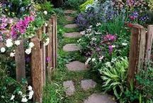Gardening,Decks , and landscaping / by Glenda (Higa) Worne