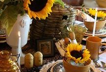 Sunflowers Yellow - Traditional Dark centers / Cut Sunflowers in arrangements, bouquets and more!