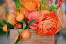 Spring- Cut Flowers- Pacific Coast Grown / Designs and ideas with Ranunculus, Stock, Alstroemeria, Larkspur, Bells of Ireland, Dianthus, Waxflower and other West Coast Grown Flowers and Fillers