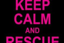 Rescued pets <3