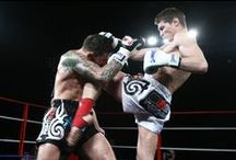 Fighters / Fighters from around the world in all kinds of disciplines using Sandee