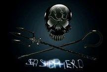 Sea Shepherd / Sou filiada e voluntária, com muito orgulho!!