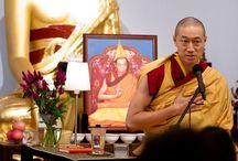 Our Teachers / Qualified Kadam Dharma Teachers