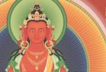 Empowerments / Develop a direct connection with Buddhas