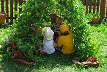 Amazing Ideas for Gardening