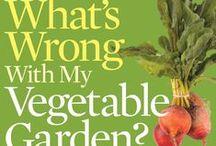 gardening / by Deana Devlin